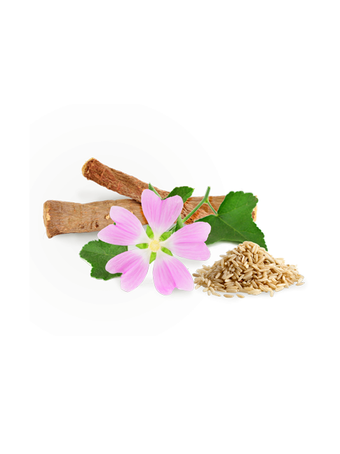 Association Guimauve, réglisse et son de riz